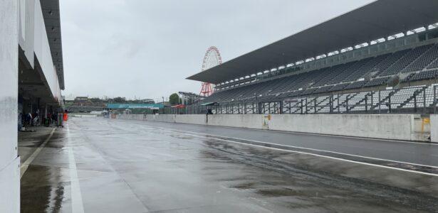 今日は予報通り雨です。